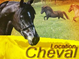 louer animal cheval